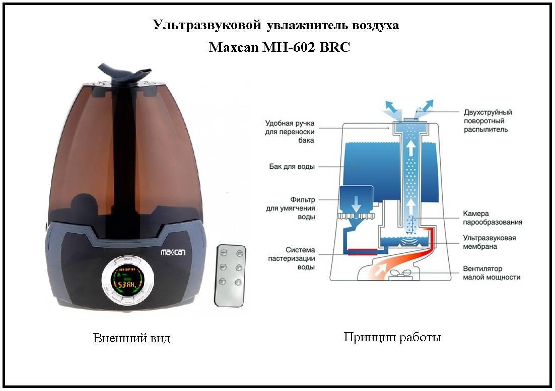 Какую воду разрешается заливать в увлажнитель воздуха