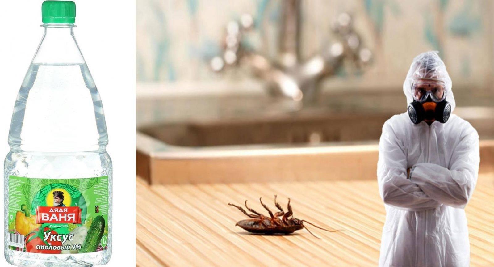 Уксус в быту и все способы его применения в домашней работе