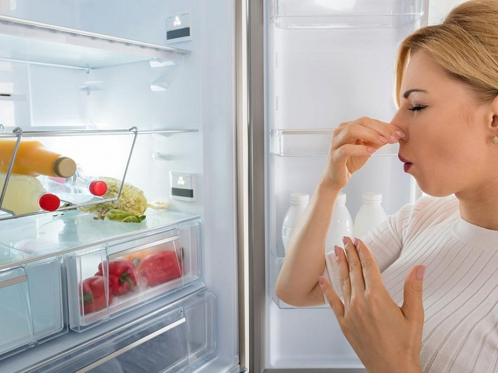 Как убрать и избавиться от запаха в холодильнике дома