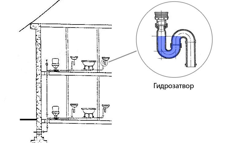 Канализационный гидрозатвор и виды сифонов