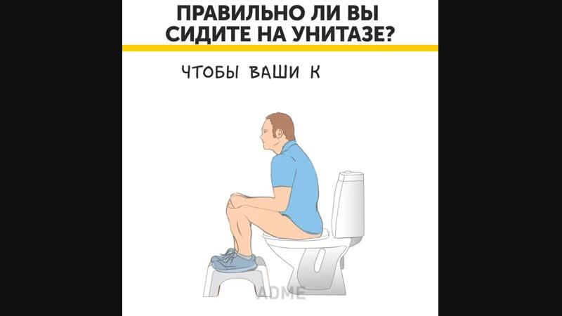 Миф или тревожный факт: почему нельзя долго сидеть на унитазе?