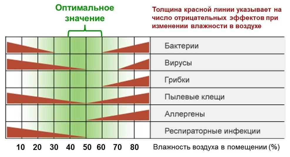 Чем опасен сухой воздух. влияние влажности на здоровье человека, внешний вид и аллергии.