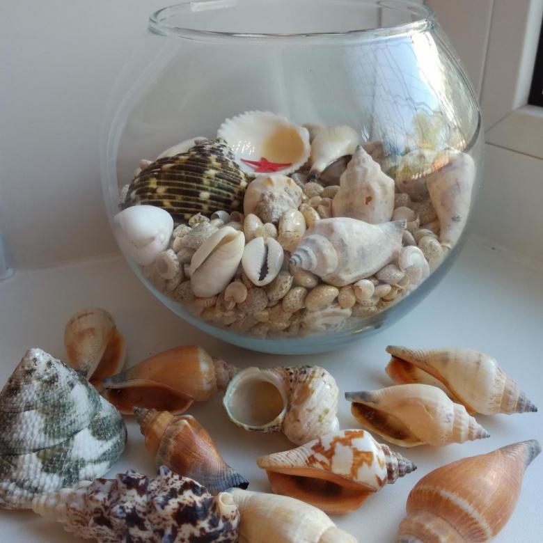 Поделки из ракушек и камней своими руками: 120 фото идей, мастер класс для начинающих с пошаговой инструкцией