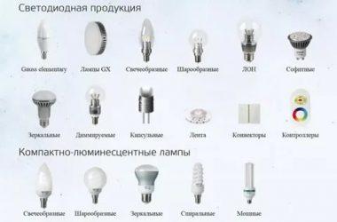 Какие бывают лампочки: 7 типов для освещения квартиры