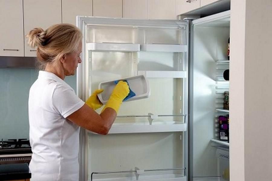 Как быстро разморозить холодильник и как часто нужна разморозка морозилки